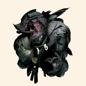 Bild für 'Collected'