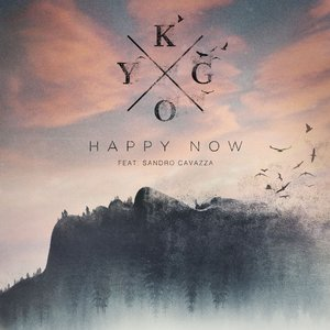 Image for 'Happy Now'
