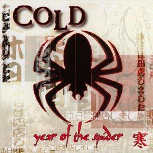 Изображение для 'Year Of The Spider'