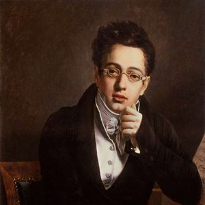 Image for 'Franz Schubert'
