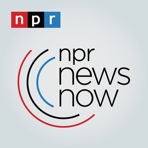 Image for 'NPR News Now'