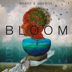 Bild für 'Bloom'