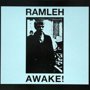 Image for 'awake!'
