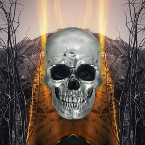 Bild für 'Dark Side of Everything'