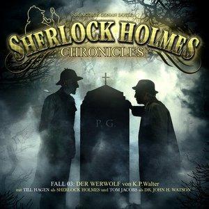 Bild für 'Sherlock Holmes Chronicles'