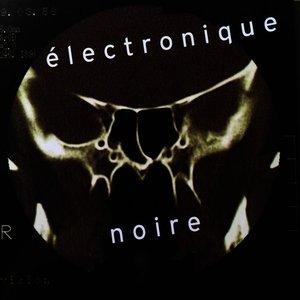 Image for 'Electronique Noire'