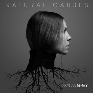 Image for 'Natural Causes'