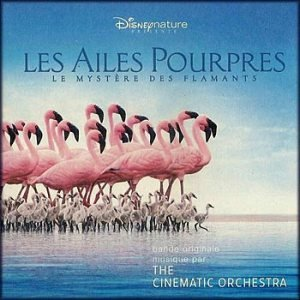 Image for 'Les Ailes Pourpres'
