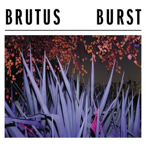 Image for 'Burst'