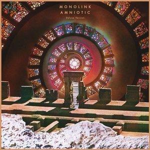 Bild für 'Amniotic (Deluxe Version)'