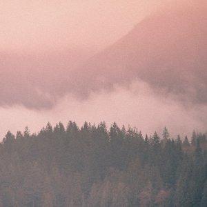 Bild für 'Arden Forest'