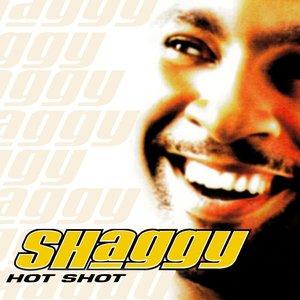 Image for 'Hot Shot'