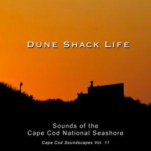 Image for 'Cape Cod Soundscapes, Vol. 11: Sounds of the Cape Cod National Seashore'