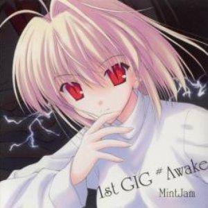 Image for '1st GIG #Awake'