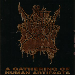 Image for 'A Gathering Of Human Artifacts'
