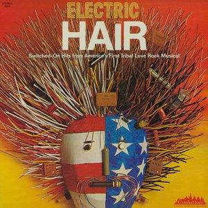 Bild för 'Electric Hair'