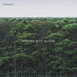 Image for 'You're Not Alone'