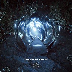 Image for 'Darkbloom'