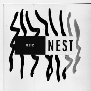 Image for 'Nest'