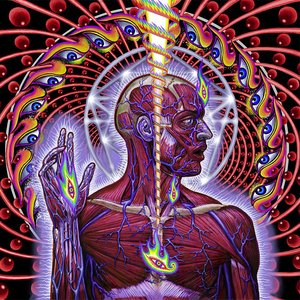 Image for 'Lateralus'
