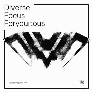 Image for 'Diverse Focus Feryquitous'