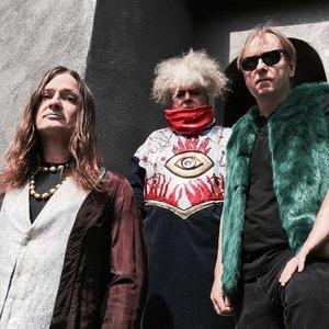 Bild für 'Melvins'