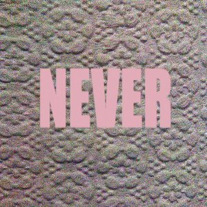 Image for 'Never'