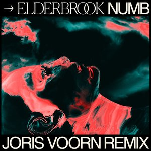 Image for 'Numb (Joris Voorn Remix)'
