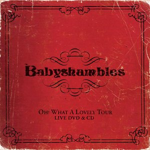 Image for 'Oh What A Lovely Tour - Babyshambles Live'
