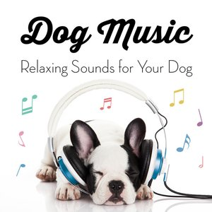 Image for 'Music for Dogs - Relaxing Sounds for Your Dog'