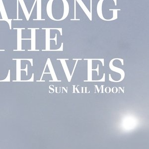 Image for 'Among The Leaves'