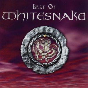 Image for 'Best of Whitesnake'