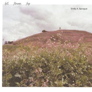 Image for 'Hill, Flower, Fog'