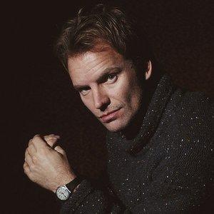 'Sting'の画像