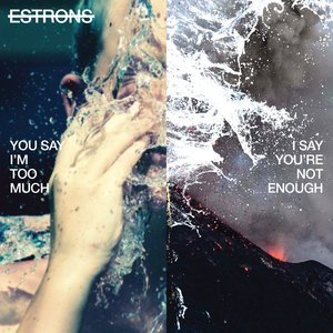 Image for 'You Say I'm Too Much, I Say You're Not Enough'