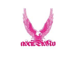 Image for 'Ascii Disko'