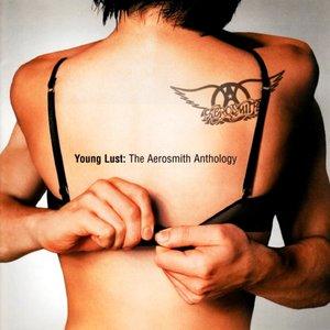 Image for 'Young Lust: The Aerosmith Anthology'