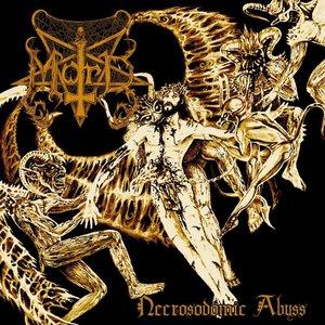Zdjęcia dla 'Necrosodomic Abyss'