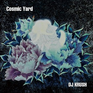 Image for 'Cosmic Yard'