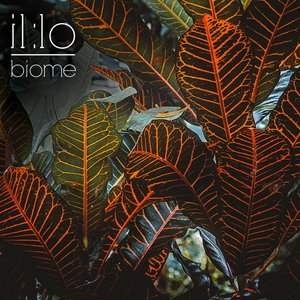 Image for 'Biome'