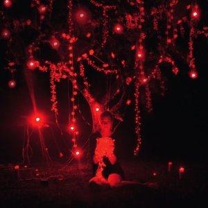 Bild für 'The Danger Of Light (Deluxe)'