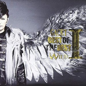 Image for 'BEST OF THE BEST (vol.1 ―WILD―)'