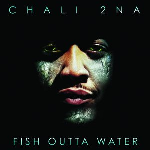 Image for 'Fish Outta Water'