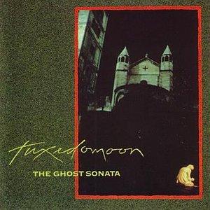 Изображение для 'The Ghost Sonata'