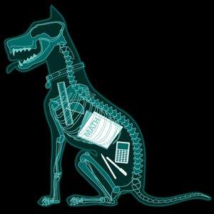 Imagen de 'X-Ray Dog'