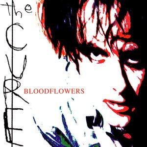 Zdjęcia dla 'Bloodflowers'