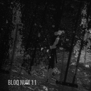 Bild för 'Bloq Num 11'