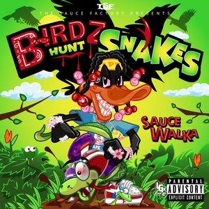 Image for 'Birdz Hunt Snakes'