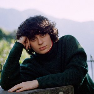 Image for 'Ana Frango elétrico'