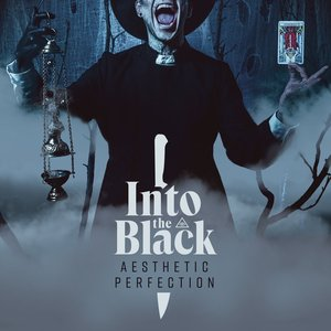 Image for 'Into The Black'